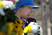 Naomi Hiratsuka, 37, whose daughter Koharu was swept away with 73 fellow elementary school students and 10 teachers during the March 11 tsunami, arranges flowers at an ad hoc  shrine outside her daughter's school in Ishinomaki, Miyagi Prefecture, Japan on 07 Sept. 2011. Photograph: Robert Gilhooly