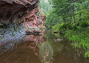 Red rock reflections in West Fork, Oak Creek Canyon, Sedona