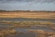 Coast between Dunwich and Walberswick, Suffolk, England. During a storm in November 2006 the sea broke through the shingle bar into Dingle Marshes. Dingle Marshes formed the largest area of freshwater reedbed in Britain and was a breeding are for the bittern. Given the inevitablity of future breeches the Environment Agency have since decided not to do any more coastal defence work here. The view is over the marshes to Walberswick.