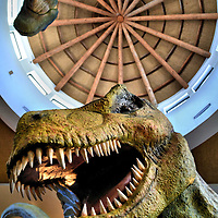 Jurassic Park Discovery Center at Islands of Adventure in Orlando, Florida<br />
