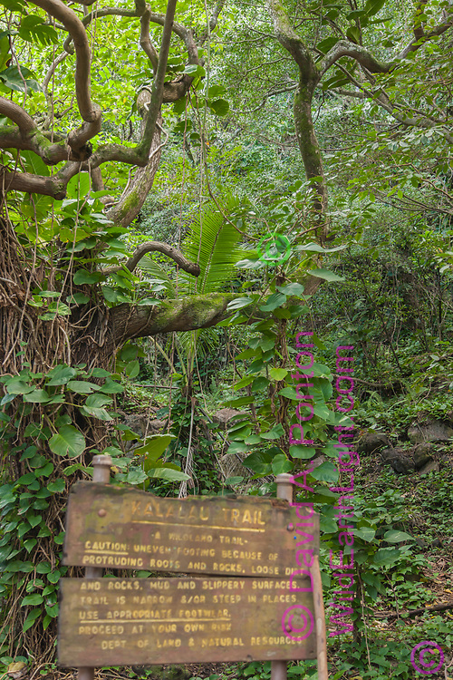 Trail sign at the start of the Kalalau Trail on the Napali Coast of Kauai, Hawaii, © 2010 David A. Ponton