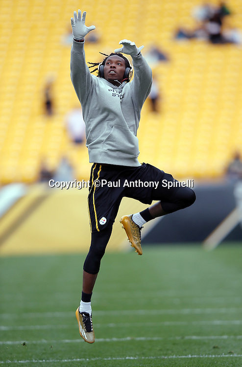 Pittsburgh Steelers wide receiver Martavis Bryant (10) jumps to catch a pregame pass while warming up before the 2015 NFL week 6 regular season football game against the Arizona Cardinals on Sunday, Oct. 18, 2015 in Pittsburgh. The Steelers won the game 25-13. (©Paul Anthony Spinelli)