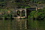The Douro Valley, with the vineyards  along its banks.