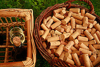 Burgundy, France..the corks of Arnaud Ente, winemaker in Meursault...Photo by Owen Franken for the NY Times..May 28, 2008.