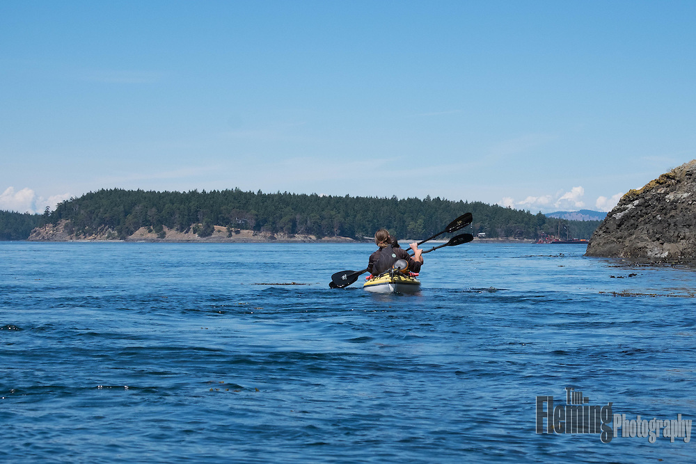 Kayakers on an eco-tour of the San Juan Islands, Washington, USA.