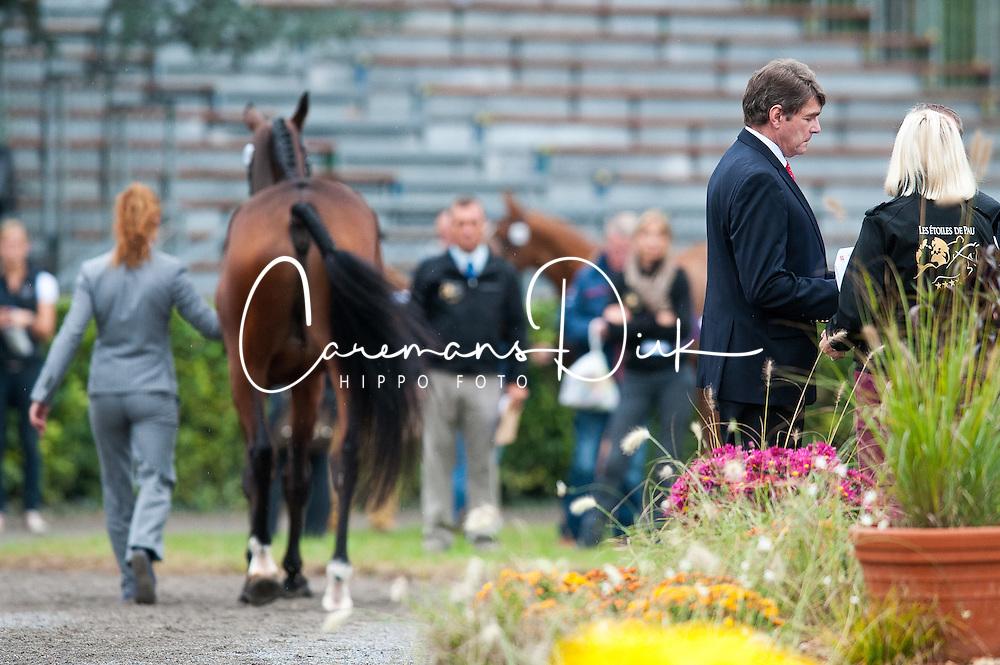 Blom Merel (NED) - Rumour Has It<br /> les Etoiles de Pau - Pau 2012<br /> © Hippo Foto - Jon Stroud