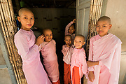 Nuns life at the Nunnery, Monywa, Myanmar