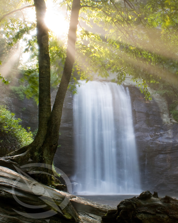 Looking glass water falls at sunrise in North Carolina