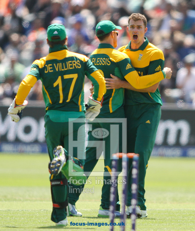 Picture by Tom Smith/Focus Images Ltd 07545141164<br /> 06/06/2013<br /> Ryan Mclaren (right) of South Africa Cricket Team celebrates taking the wicket of Suresh Raina of India during the ICC Champions Trophy match at the SWALEC Stadium, Cardiff.