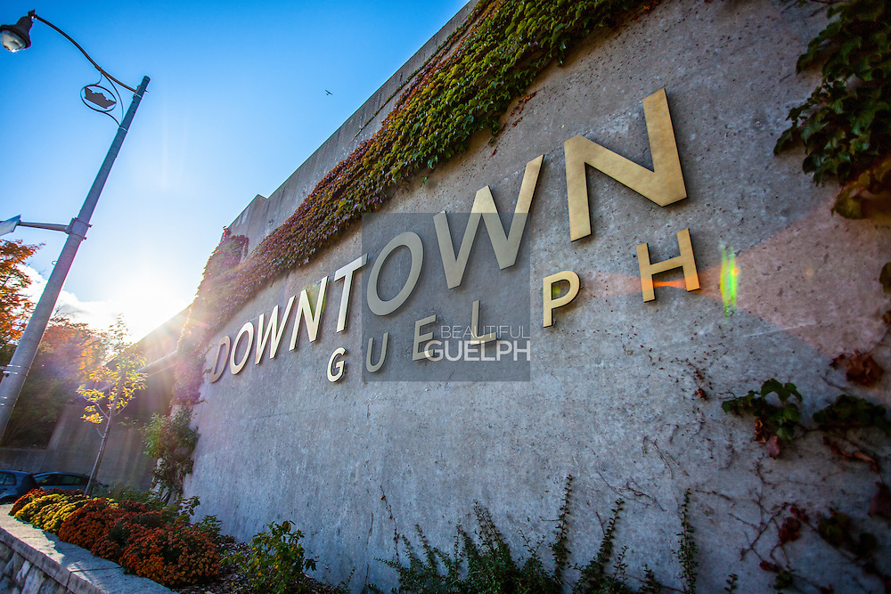 A sign welcoming people to downtown Guelph. Photo by Mido Melebari
