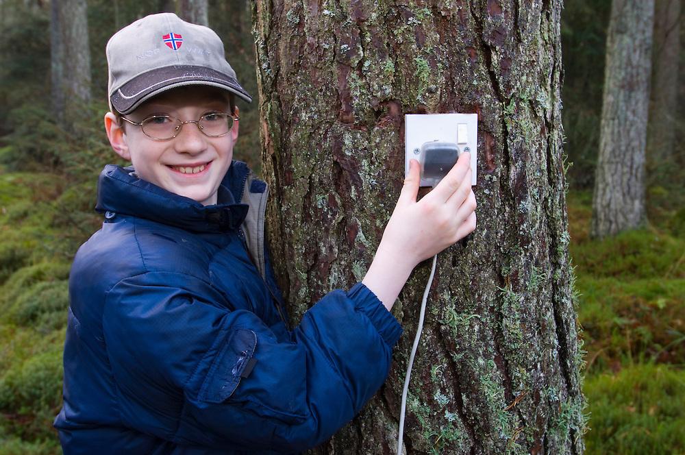 Boy putting plug into a socket in a pine tree