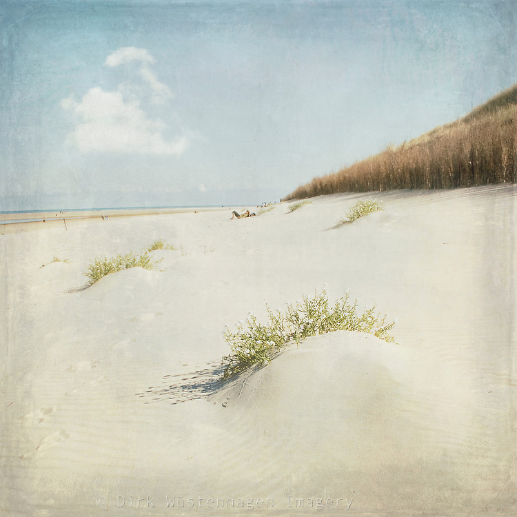 Beach of Spiekeroog / Germany