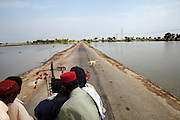 Villagers travel on a tractor past the flooded fields near Shikarpur, in Sindh Province, Pakistan.