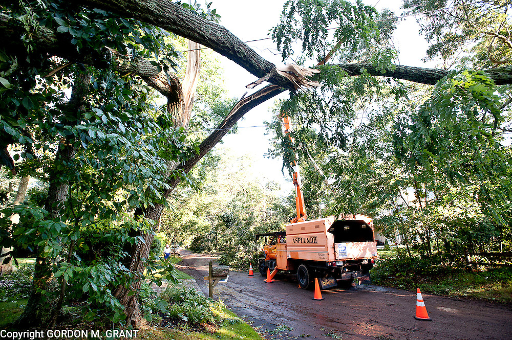 LIPA tree crews remove trees and branches from power lines on Glade Road in the Springs area of East Hampton after a quick moving storm moved through the area Wednesday evening.. (July 22, 2010)