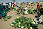 The Breidjing Refugee Camp, Eastern Chad on the Sudanese border shelters 30,000 people who have fled their homes in Darfur, Sudan. Food is distributed free of charge by the United Nations WFP (World Food Program), but here in this camp market at the end of Ramadan, large numbers of watermelons are sold for the feast at the end of this month long Muslim holiday. (Supporting image from the project Hungry Planet: What the World Eats.)
