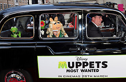 © Licensed to London News Pictures. 24/03/2014, UK. Constantine; Kermit the Frog; Miss Piggy, Muppets Most Wanted - VIP screening, Curzon Mayfair, London UK, 24 March 2014. Photo credit : Richard Goldschmidt/Piqtured/LNP