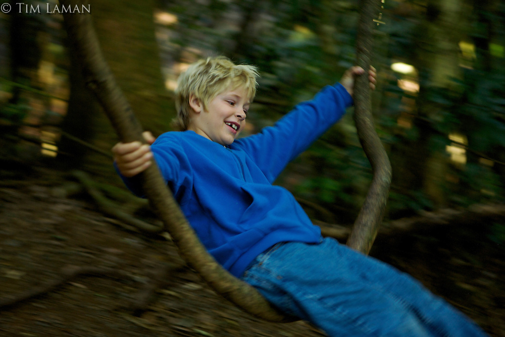 An 8 year old boy playing on a natural vine swing in the rain forest.  Lamington National Park.