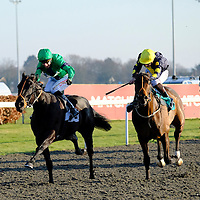 Kempton 17th January