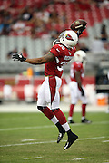 Arizona Cardinals strong safety Deone Bucannon (36) leaps to make a one hand catch a pass during pre game warmups before the 2014 NFL preseason football game against the Houston Texans on Saturday, Aug. 9, 2014 in Glendale, Ariz. The Cardinals won the game in a 32-0 shutout. ©Paul Anthony Spinelli
