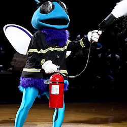 November 5, 2010; New Orleans, LA, USA; New Orleans Hornets mascot Hugo sprays a fire extinguisher at mid court prior to tip off of a game against the Miami Heat at the New Orleans Arena. Mandatory Credit: Derick E. Hingle