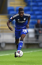 Sammy Ameobi of Cardiff City - Mandatory by-line: Paul Knight/JMP - Mobile: 07966 386802 - 11/08/2015 -  FOOTBALL - Cardiff City Stadium - Cardiff, Wales -  Cardiff City v AFC Wimbledon - Capital One Cup