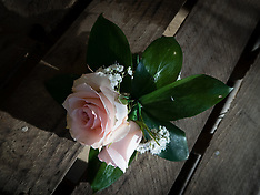 wedding flowers,corsage and button hole in heavan roses