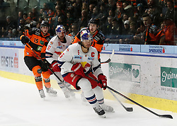 18.01.2019, Merkur Eisstadion, Graz, AUT, EBEL, Moser Medical Graz 99ers vs EC Red Bull Salzburg, 39. Runde, im Bild von links Amadeus Egger (Moser Medical Graz 99ers), Michael Schiechl (EC Red Bull Salzburg), Robin Jacobsson (Moser Medical Graz 99ers) und Thomas Raffl (EC Red Bull Salzburg) // during the Erste Bank Eishockey League 39th round match between Moser Medical Graz 99ers and EC Red Bull Salzburg at the Merkur Eisstadion in Graz, Austria on 2019/01/18. EXPA Pictures © 2019, PhotoCredit: EXPA/ Erwin Scheriau