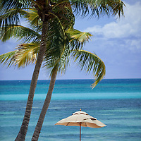 A lone umbrella provides refuge from the Caribbean sun along the blue waters of a palm-lined beach in the Dominican Republic.