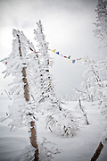 Backcountry skiing at Jackson Hole, Wyoming.