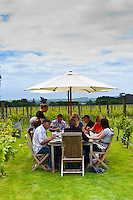 A table set for lunch in the vineyards at Coney Wines, Martinborough, Wairarapa region near Wellington, North Island, New Zealand
