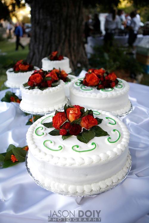 wedding.8-26-07.photo by Jason Doiy.