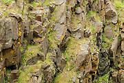 Rocks and grass<br /> Grand Manan Island<br /> New Brunswick<br /> Canada