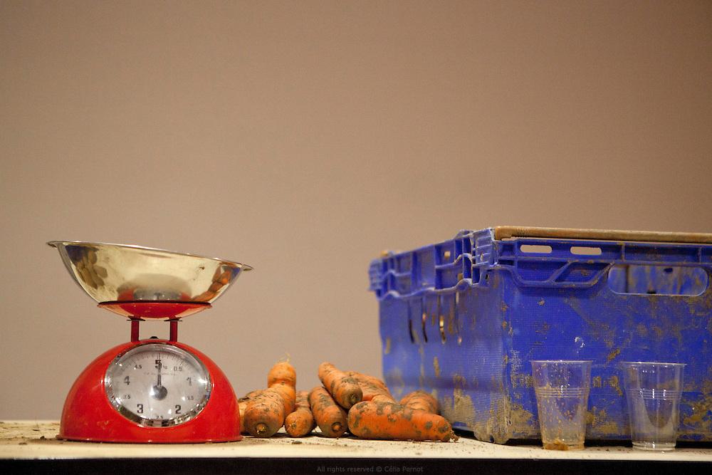 Pomme d'amap, distribution de paniers bio, Ivry-sur-Seine
