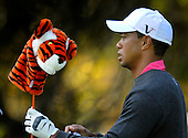 Chevron World Challenge: Tiger Woods