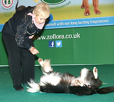 MAY 12 2013 London Pet Show