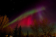 Northern lights or aurora in city<br /> Winnipeg<br /> Manitoba<br /> Canada
