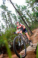 Oak Valley ( Elgin / Grabouw ), SOUTH AFRICA - Andrew Maclean rides through the single track at High Rising during stage six , 6 , of the Absa Cape Epic Mountain Bike Stage Race in Oak Valley ( Elgin / Grabouw ) on the 27 March 2009 in the Western Cape, South Africa..Photo by Karin Schermbrucker /SPORTZPICS