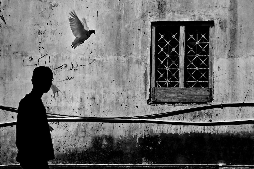 KARACHI, PAKISTAN - OCTOBER 14: A young boy living at the Edhi Village, feeds his pigeons on October 14, 2008, on the outskirts of Karachi, Pakistan. Doctors said he was fine that morning; eating his breakfast and bathing before collapsing and dying seconds after bring him into the infirmary. The Edhi Foundation urges women give up unwanted children rather than abandon or kill in order to cover up children conceived out of wedlock, or through rape. The Edhi Foundation orphanages represent a microcosm of Pakistan's absolute poverty where children are its first casualty, tragedy and hope collide on a daily basis, and life and death are in constant flux existing only rooms apart. Pakistan is a country more than a third of it's population live in absolute poverty. As world attention fixates on Pakistan's ongoing political turmoil, generations of children are being abandoned due to Pakistan's spiraling poverty and growing instability. Some are born out of wedlock - a major social taboo - others discarded due to physical and mental disabilities, but nearly all are abandoned due to poverty. Boys and girls alike are abandoned every year, found in dumpsters mauled by rats and dogs, or left to fend for themselves on the streets of Karachi's sprawling and unforgiving metropolis. The lucky ones find their way to the Edhi Foundation orphanages. (Photo by Warrick Page)