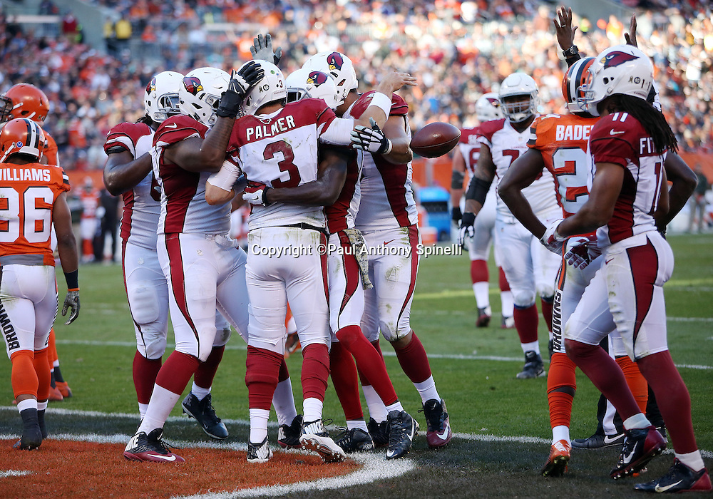 Teammates celebrate with Arizona Cardinals quarterback Carson Palmer (3) after he scores a fourth quarter touchdown on a run that gets reviewed and reversed as short of the goal line during the 2015 week 8 regular season NFL football game against the Cleveland Browns on Sunday, Nov. 1, 2015 in Cleveland. The Cardinals won the game 34-20. (©Paul Anthony Spinelli)