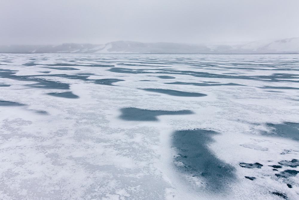 Norway, Svalbard, Nordaustlandet, Sea ice in snow storm in Murchison Fjord at Nordvika along Hinlopen Strait