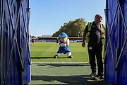 Haydon the Womble doing a dance in front of the tunnel entrance, possibly the Haka during the EFL Sky Bet League 1 match between AFC Wimbledon and Bristol Rovers at the Cherry Red Records Stadium, Kingston, England on 21 September 2019.