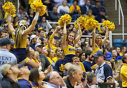 Jan 18, 2017; Morgantown, WV, USA; West Virginia Mountaineers cheerleaders are seen in the crowd late in the second half against the Oklahoma Sooners at WVU Coliseum. Mandatory Credit: Ben Queen-USA TODAY Sports