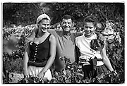 vineyard workers, daughters, Bandol, France