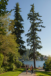 North America, United States, Washington, Bellevue, Meydenbauer Beach Park