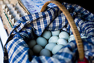Philippines, Metro Manila. Pateros, of the cities of Metro Manila, has been famous since many years for balut business. Balut is the popular Filipino delicacy.