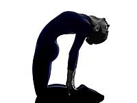 woman exercising Ustrasana camel pose yoga silhouette shadow white background