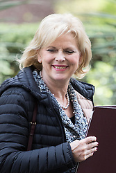 Downing Street, London, April 12th 2016. Small Business Minister Anna Soubry leaves the weekly cabinet meeting. <br /> ©Paul Davey<br /> FOR LICENCING CONTACT: Paul Davey +44 (0) 7966 016 296 paul@pauldaveycreative.co.uk