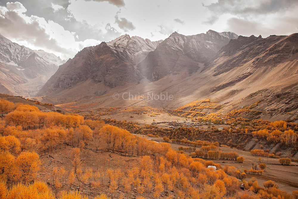 A view of autumn foliage and a village in the Suru River Valley, Kargil District, Ladakh India.
