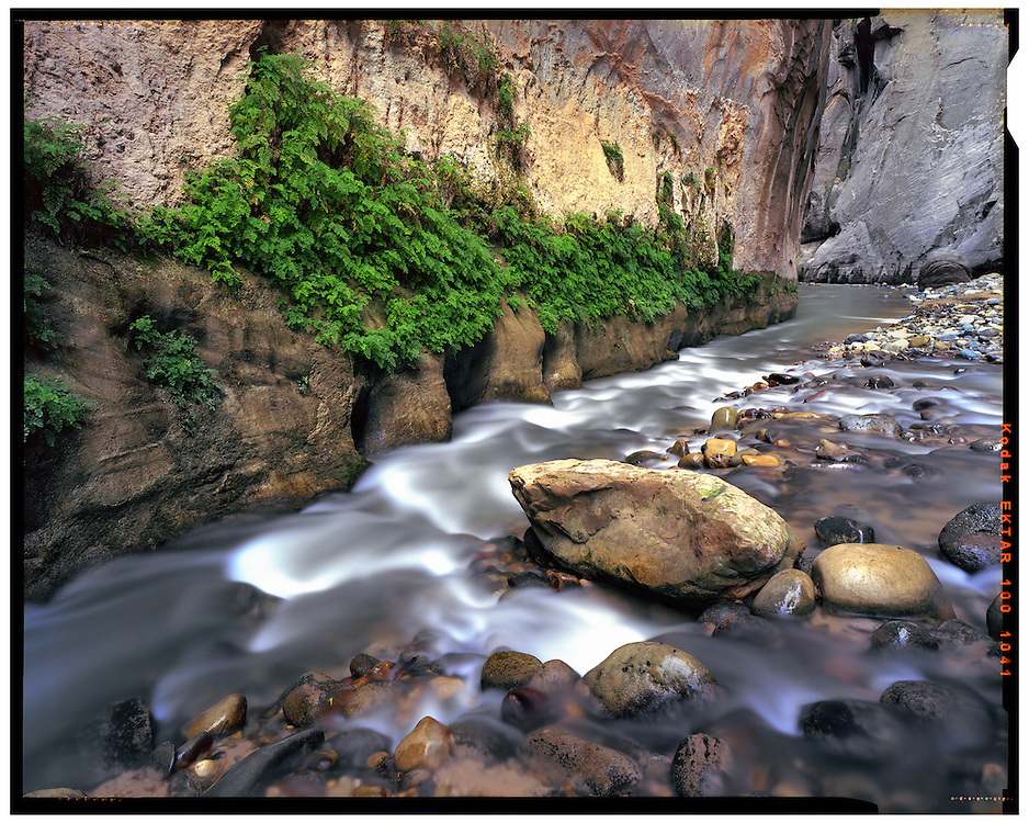 Zion National Park, UT 11/2/2015<br />