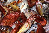 Lipari, Fish, Restaurant, Italy, Italia, Best food in the World, Pasta, www.dankullberg.com